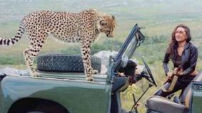 करिश्मा कपूर की गाड़ी पर जब आकर बैठा चीता